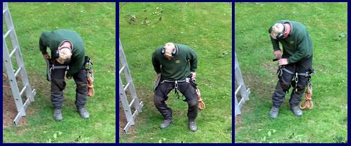 Lumberjacks3.jpg