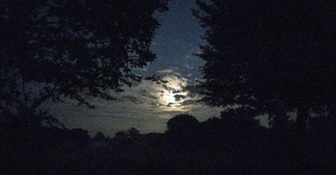 Norfolk7-moonlightNeatishead.jpg