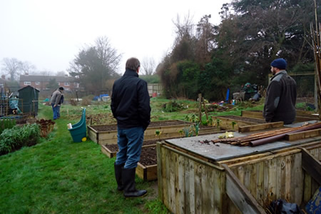 Allotment.jpg